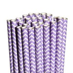 Purple Chevron Straws