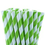 Green White Stripe Paper Straws