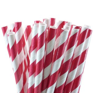 Red White Stripe Paper Straws